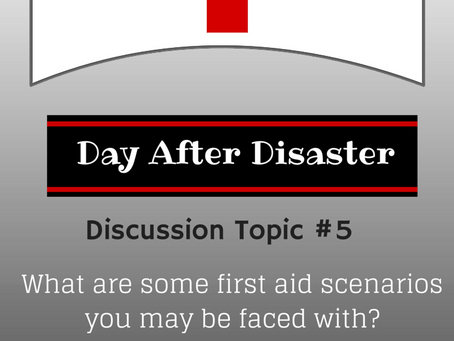 Day After Disaster Discussion #5
