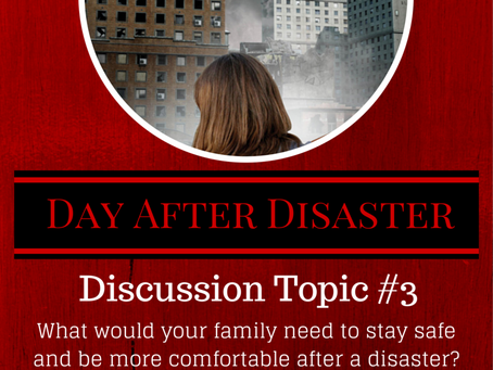 Day After Disaster Discussion #3
