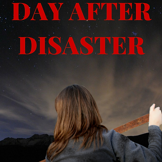 Day After Disaster, Book 1