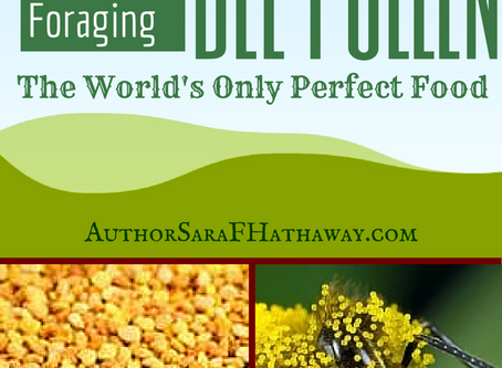 Bee Pollen, A Prepper's Dream