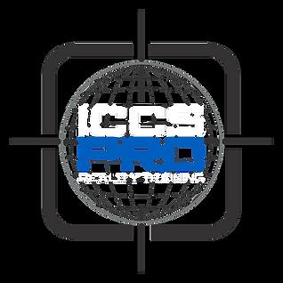 pro logo 3.png