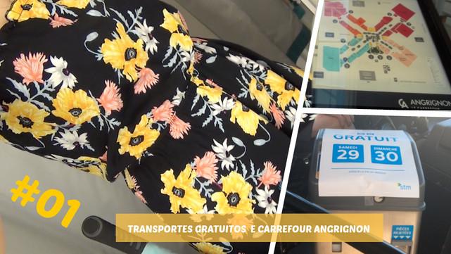 VLOG Transportes grátis #01 | Ida ao shopping Carrefour Angrignon | Provadores da H&M