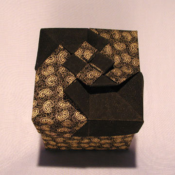Cube - Vortex, Gold Paisleys and Black