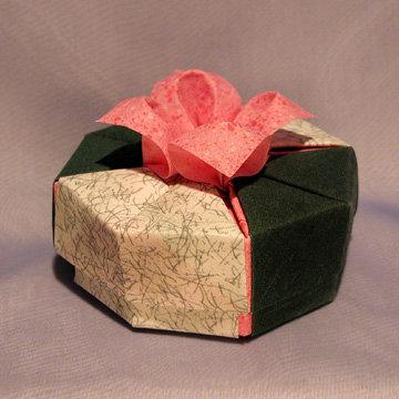 Octagon - Daylily, Daylily on Green