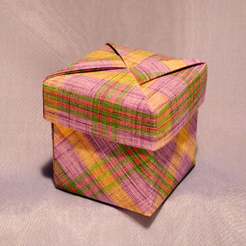 Cube - Darts, Violet Yellow Plaid