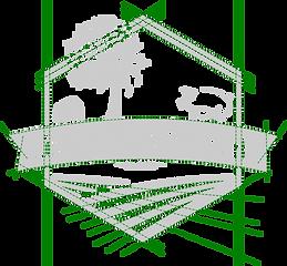 LPP design lines.png