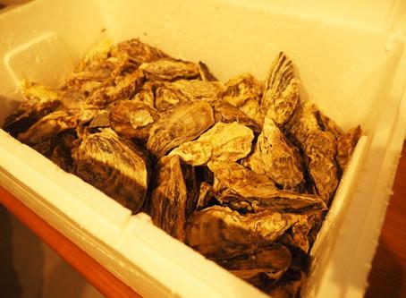 🎉レッツ牡蠣パーティー🎉