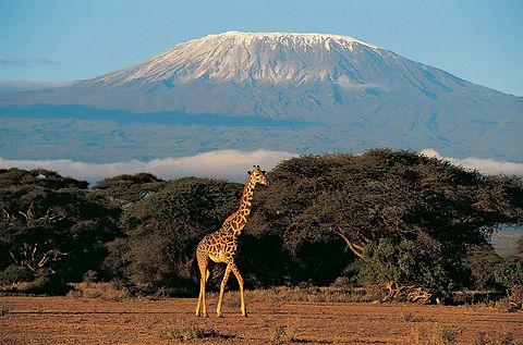 Mount-Kilimanjaro-Tanzania (1).jpg
