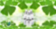 NewulifeINDREP.jpg