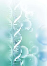 Laboratorní testy - mikrobiom, candida, úzkost, deprese, únava, potravinové intolerance