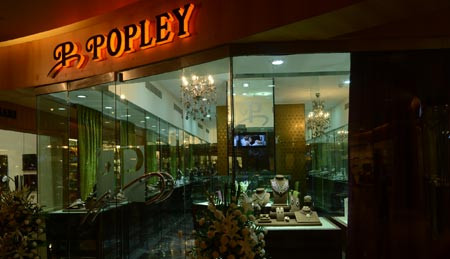 Internship at Popley Group