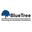 BlueTree Consultancy Services Private Limited