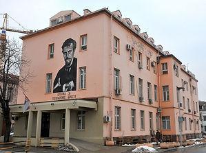 Laza Lazarevic Bolnica.jpg