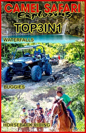 safari tours puerto plata