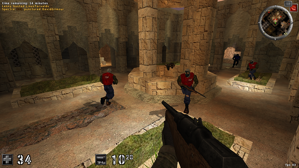 Assault Cube Linux Game