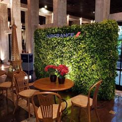 Jardim vertical Ficus