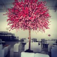 Arvore Francesa - Rosa