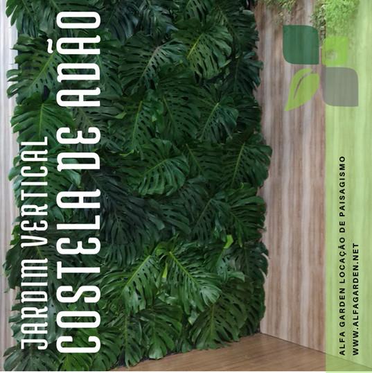 Jardim_Vertical_Costela_de_Adão