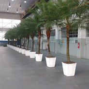 Fenix 4.00m - Vaso Branco