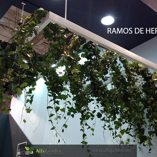 Ramos de Hera