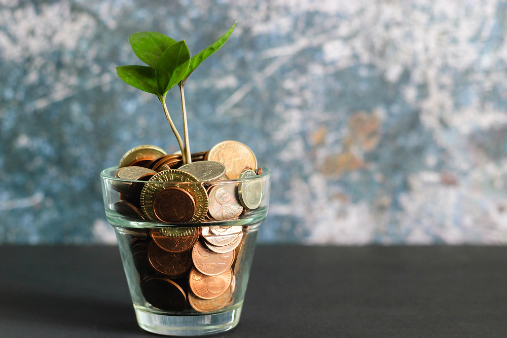 glass pot with copper coins and plant growing out of the top
