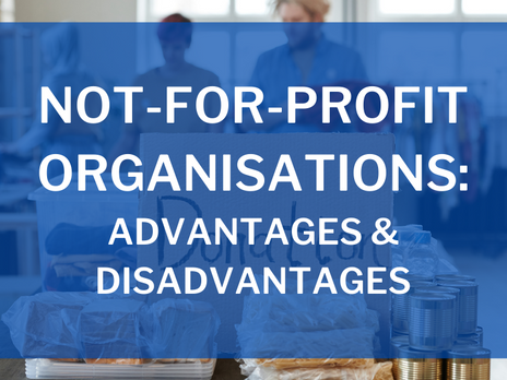 Not-For-Profit Organisations: Advantages and Disadvantages