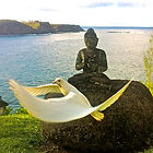 White dove flying by Buddha