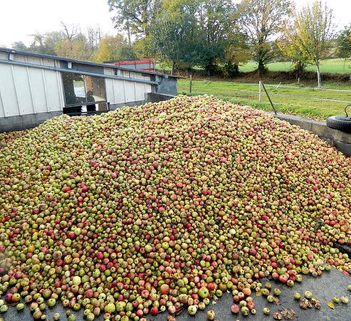 Le Bois Pomme Pic.jpg