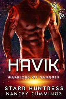 havik-222-333.jpg