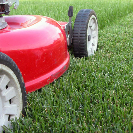 Two Poems: Odes to the Lawnmower