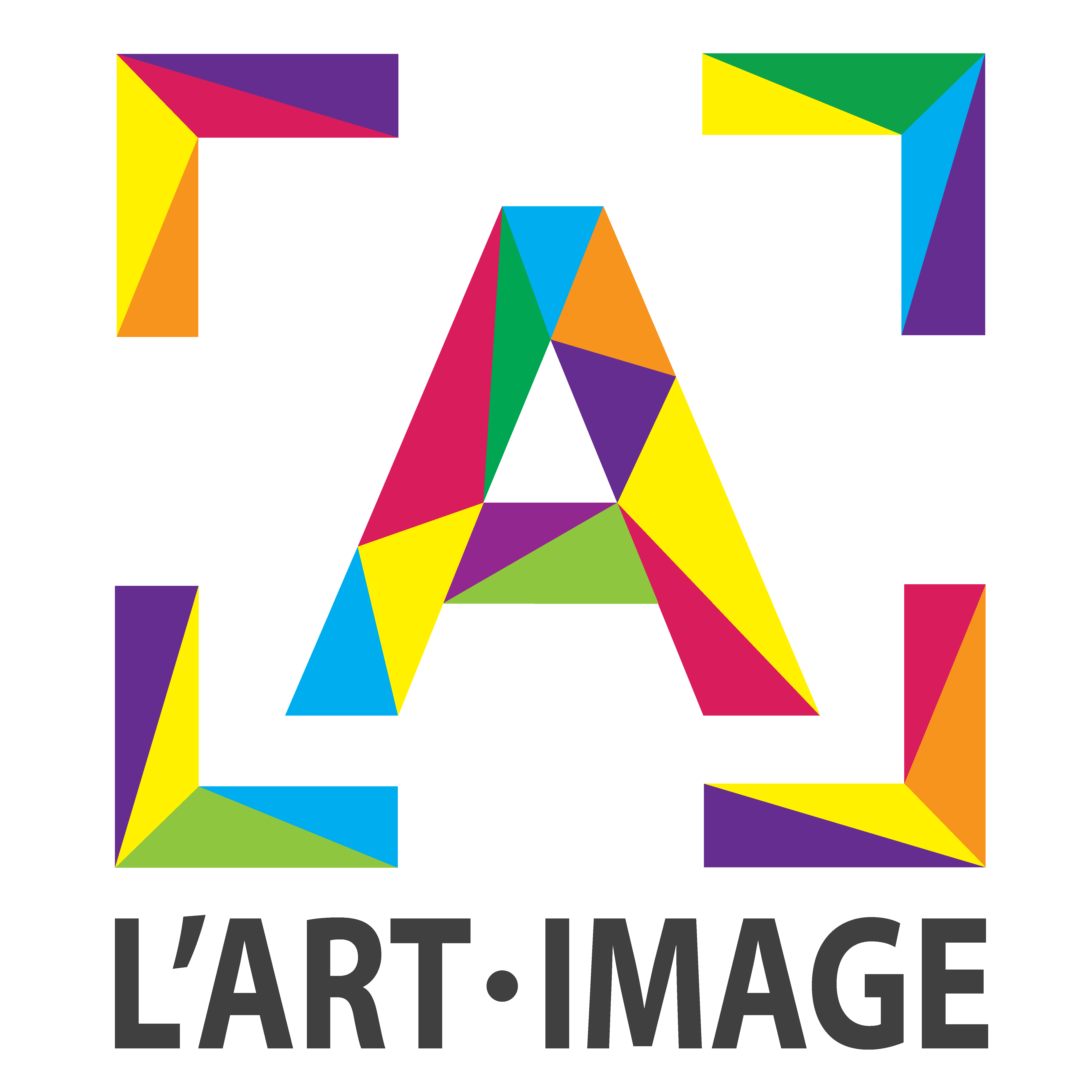 L'Art Image Ste Gemmes sur Loire