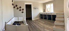 dog room.JPG