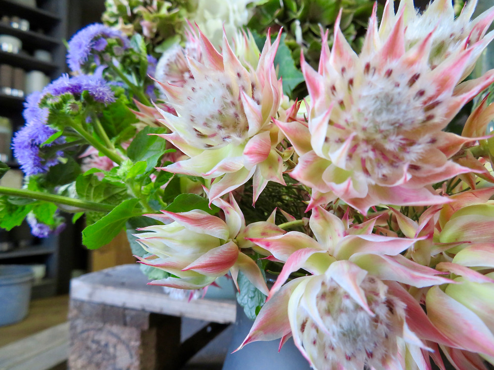 Fleur Blushnig Bride chez L'Apprt'en Fleurs
