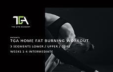 home fat intermediate.png