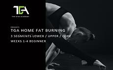 Home Fat Beginner.png