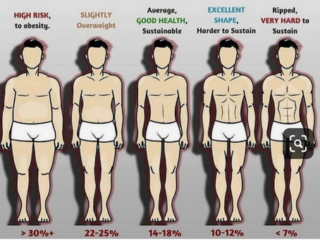 What is your Bodyfat Percentage
