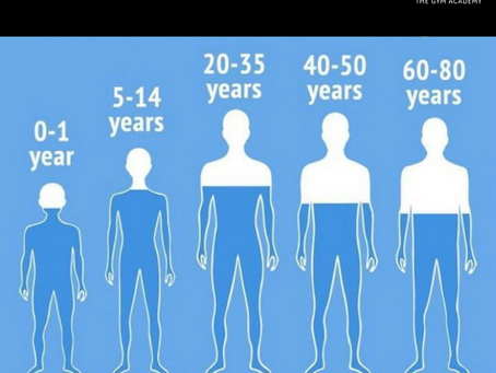 How Much Water is in Your Body?