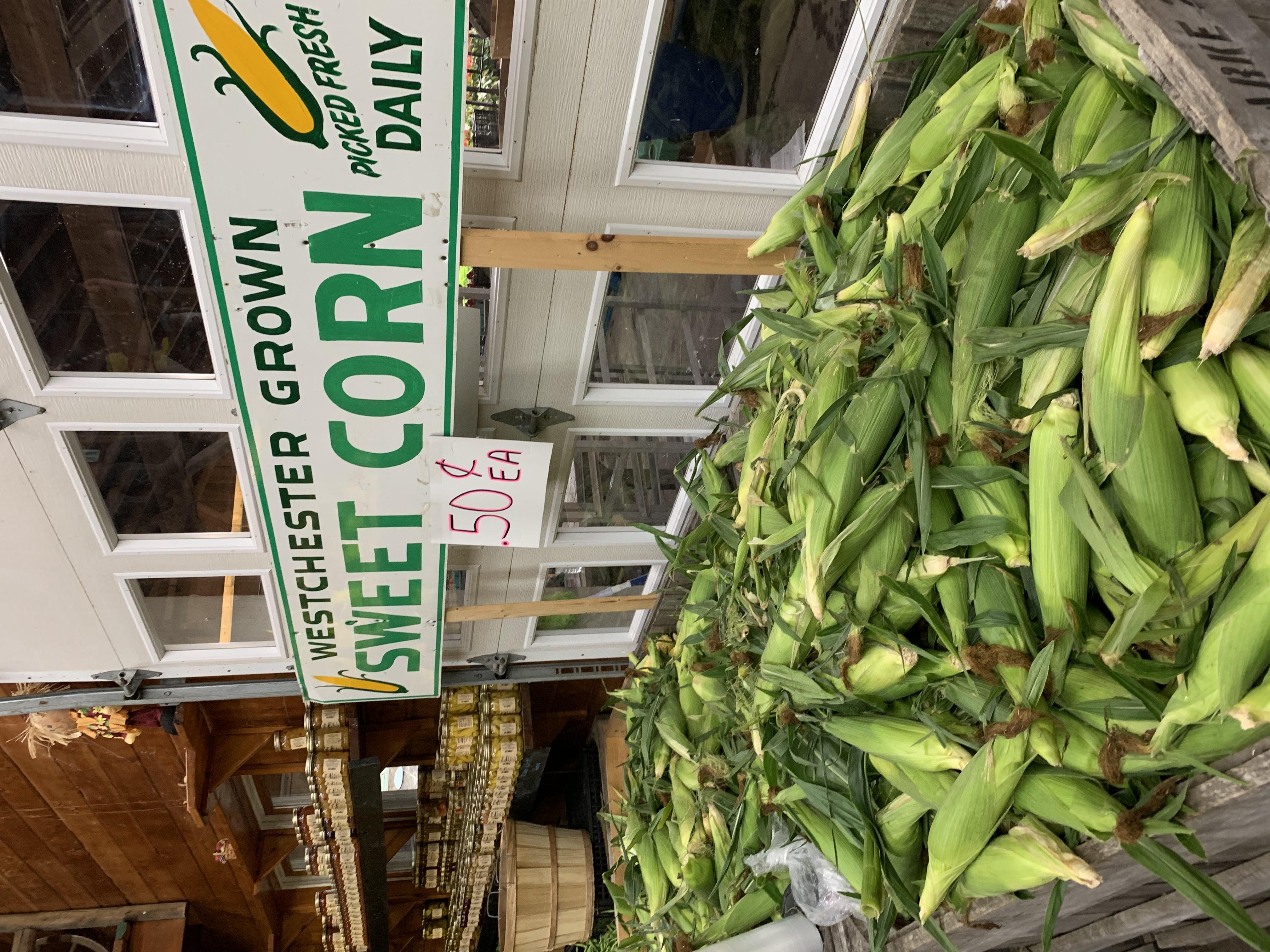 hg corn