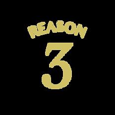 reason-04.png