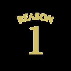 reason-02.png
