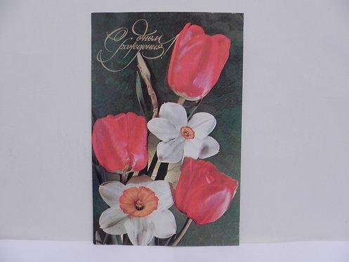 """Открытка цветы """"тюльпаны и нарциссы """", 1974 г., СССР"""