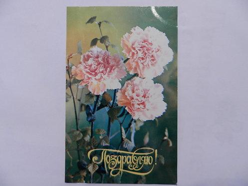 Открытка гвоздики, 1977 г., СССР