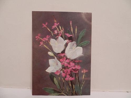 Почтовая карточка «Цветы. Гвоздика и колокольчики» СССР