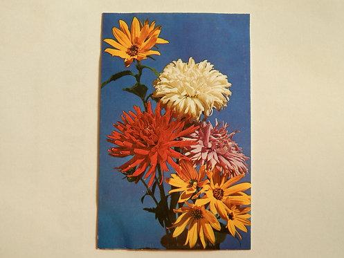 """Открытка цветы """"осенний букет"""", 1976 г., СССР"""