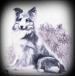 Trixy's Portrait