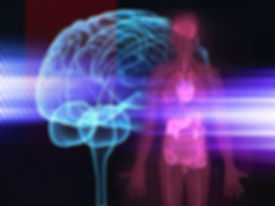 brain body immune.jpg