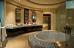 stunning, extravagant remodeled bathroom