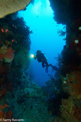 our-divemaster-billy-at-the-swimthrough-photo-courtesy-of-samy-kassem