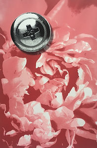 Pink Peony (2018).jpg