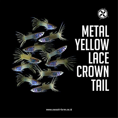 METAL YELLOW LACE CROWN TAIL